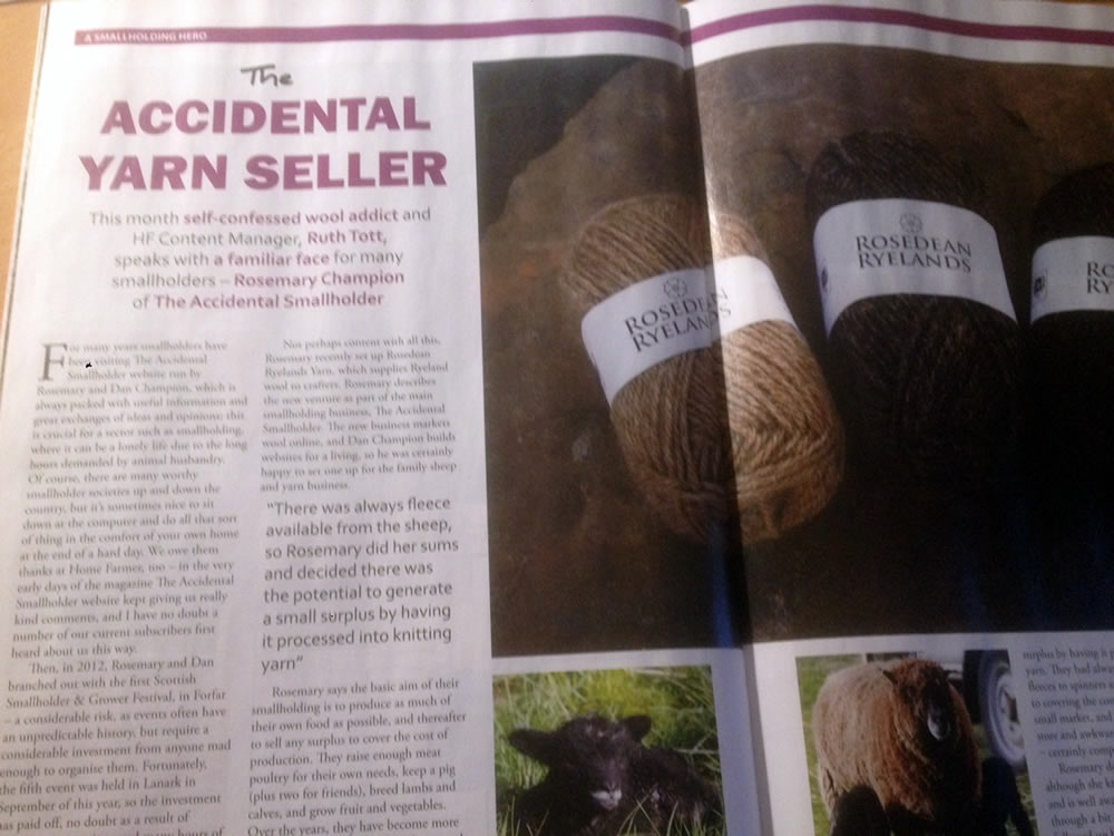 Home Farmer yarn article